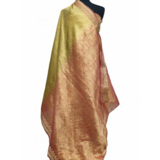 Golden Shimmer Sari