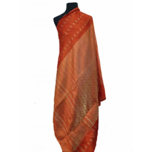 Burnt Orange Sari