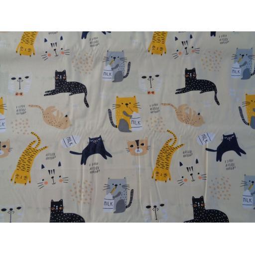 Cartoon Cats.jpg