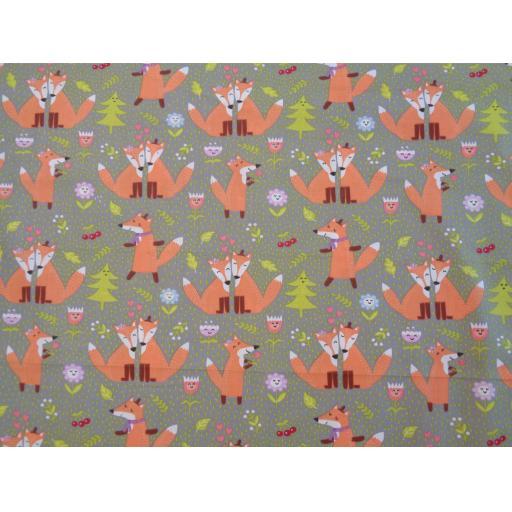 Grey Foxes.jpg