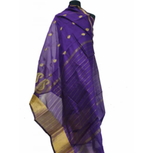 Indigo and Gold Sari