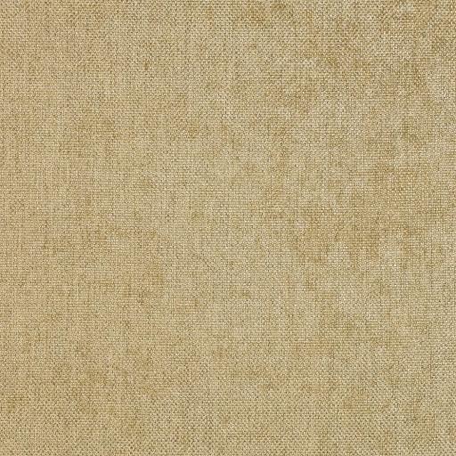 car07-pistachio.jpg
