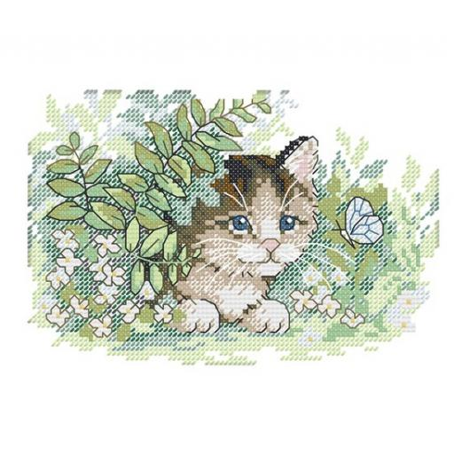 Hidden Cat.jpg