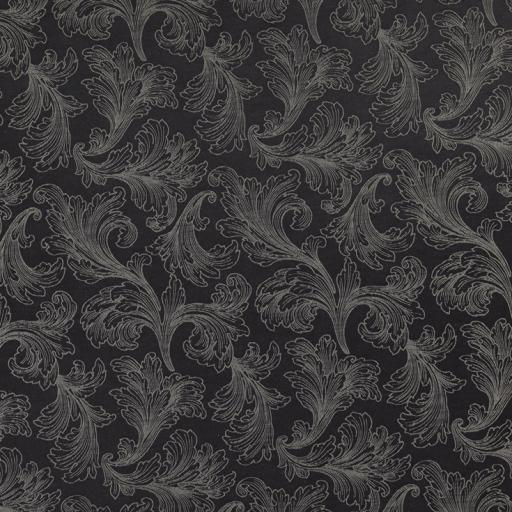 maca05-raven.jpg