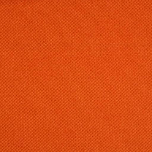 her12-persimmon.jpg