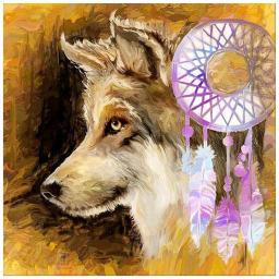 Wolf and Dreamcatcher.jpg