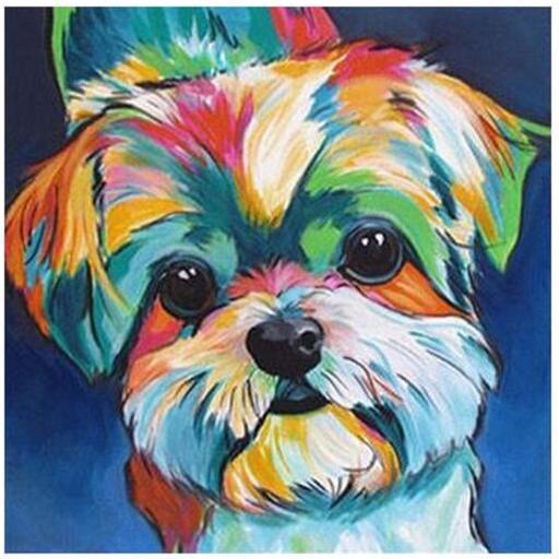 Colourful Dog.jpg