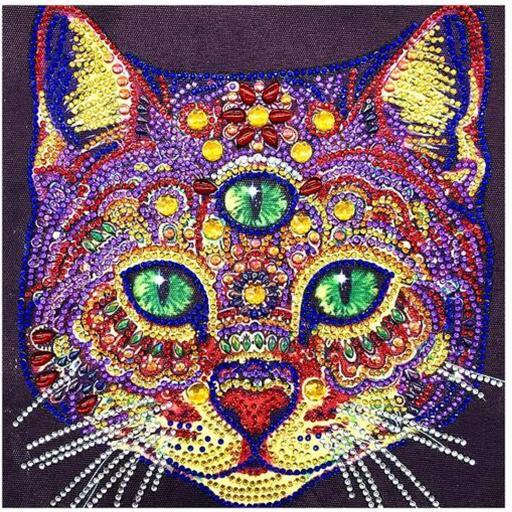 Three Eyed Cat.jpg